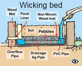 Passive Irrigation Techniques