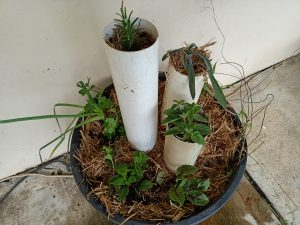 Quick & Easy Herb Wicking Bed